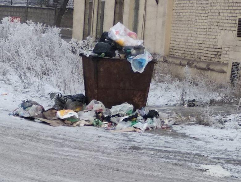 В Магнитогорске экологические инспекторы отправились в рейд, фото-1