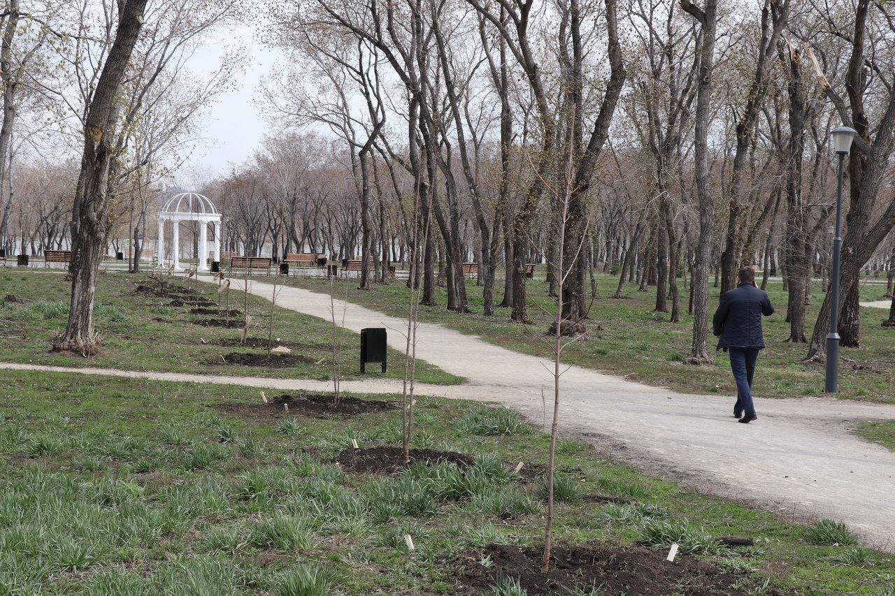 Озеленение Магнитогорска началось, фото-1
