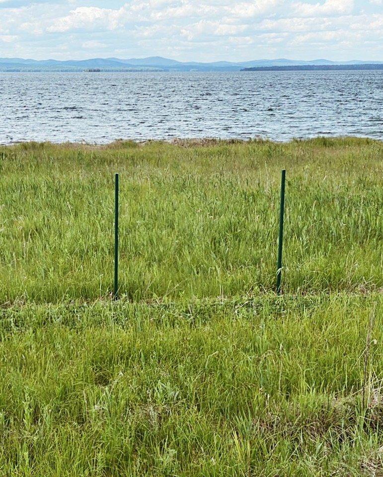 Алексей Текслер о заборе возле озера Увильды: «природные богатства у нас общие», фото-1