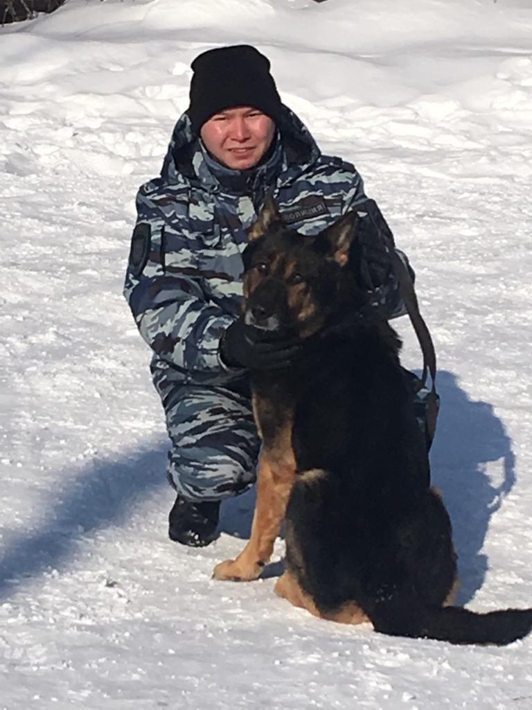 Нюх на преступников: служебный пес Боярд помог магнитогорским полицейским найти вора, фото-1
